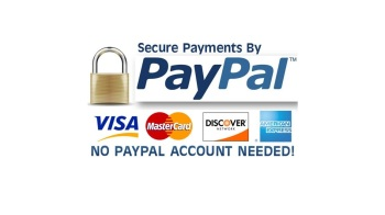 Paypal button pay